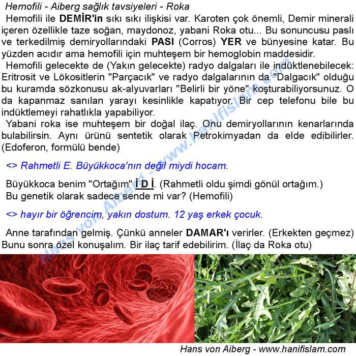 041-06-hemofili