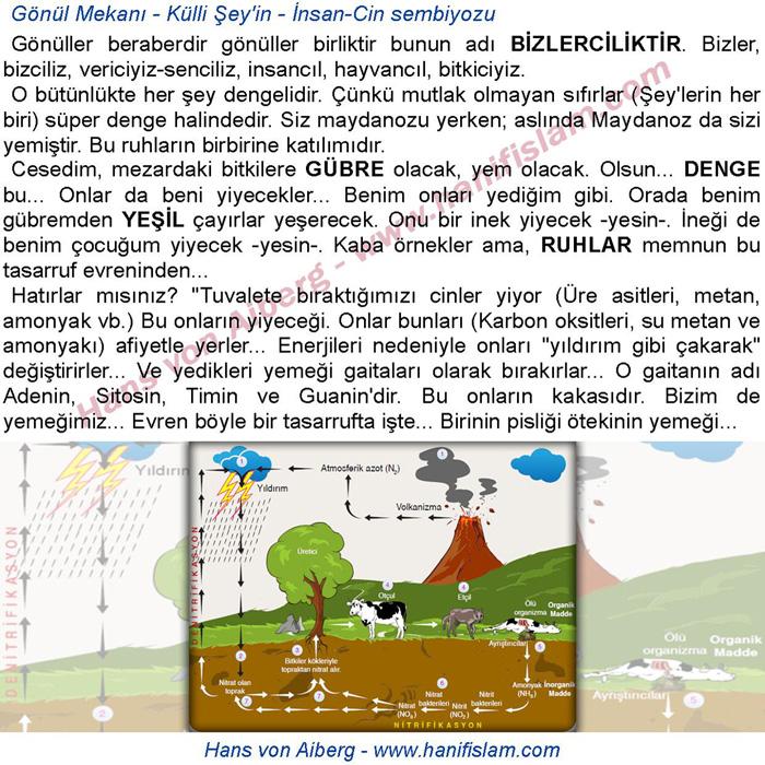 068-04-cin-insan-sembiyozu