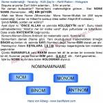 070-20-nom-matematigi-monom-binom-antinom-hologram