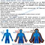 071-13-yaratilis-madde-nefs-ruh-ademe-secde-etmek