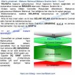 071-31-makami-mahmud-ibrahim-farki-cennet-sabikun