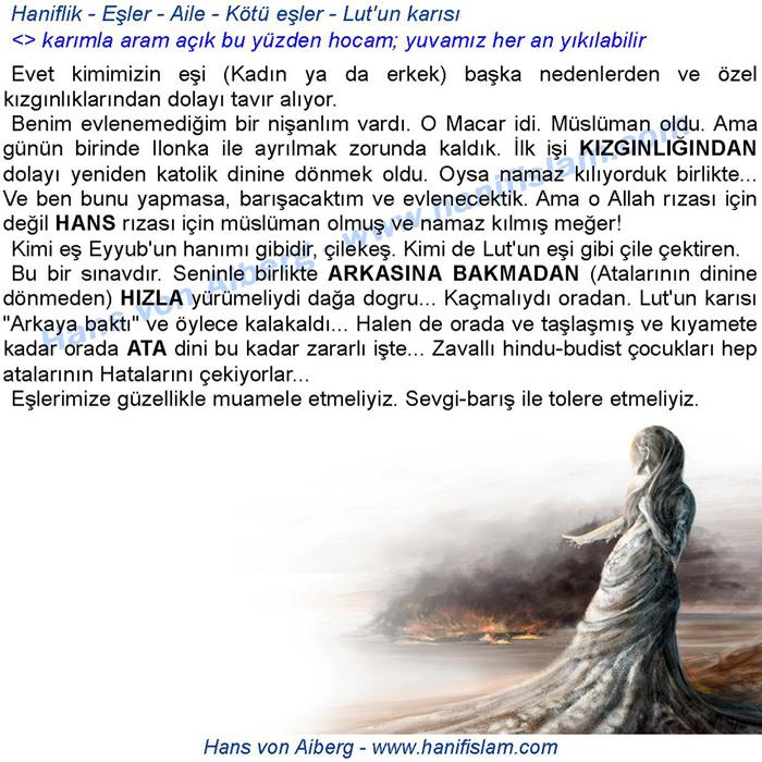 071-33-haniflik-esler-lutun-karisi